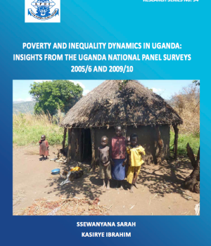 Poverty and inequality dynamics in Uganda:  insights from the Uganda national Panel surveys  2005/6 and 2009/10