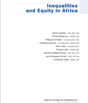 Inequalities and Equity in Africa