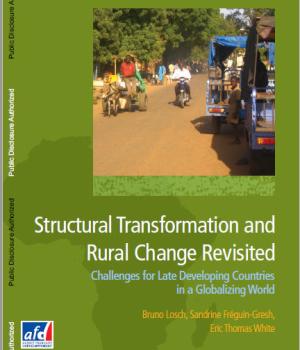 Structural Transformation Rural Change