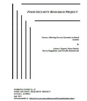 Factors Affecting Poverty Dynamics in Rural Zambia